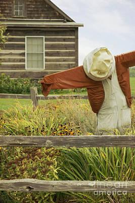Photograph - In The Garden by Margie Hurwich