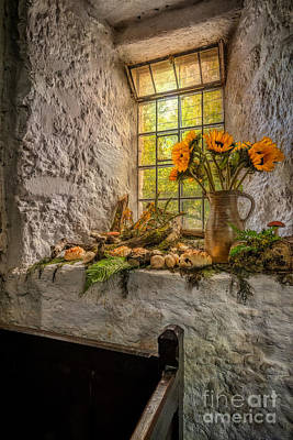 Historic Home Photograph - In The Light by Adrian Evans