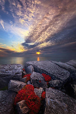 Photograph - Inbetween by Phil Koch