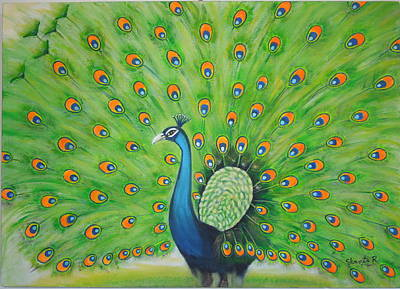 Painting - Indian Peacock by Shanta Rathie