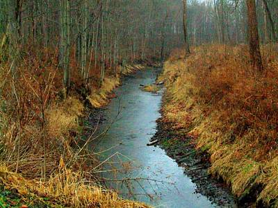 Indiana Landscapes Photograph - Indiana Stream by Michael L Kimble