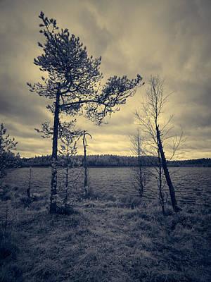Photograph - Infradawn by Jouko Lehto