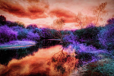 Mixed Media - Infrared Landscape 2 by Lilia D