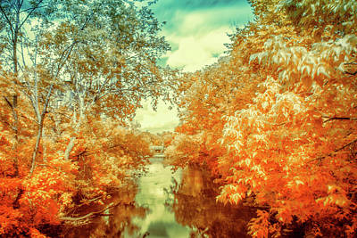 Photograph - Infrared Landscape by Lilia D