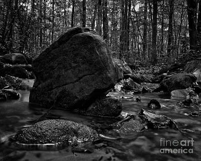 Photograph - Into The Stream 6 by Jimmy Ostgard