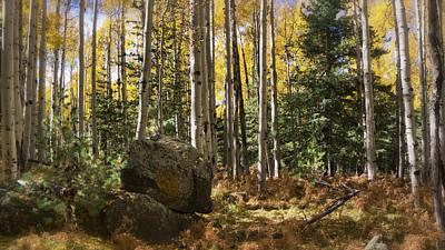 Photograph - Into The Woods  by Saija Lehtonen