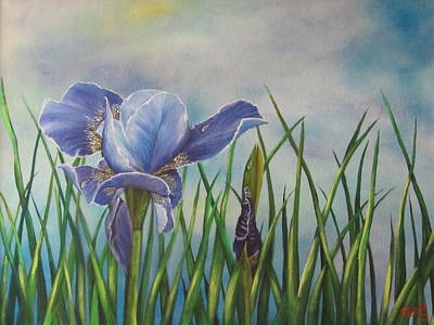 Iris In Bloom Art Print by Terry Boulerice