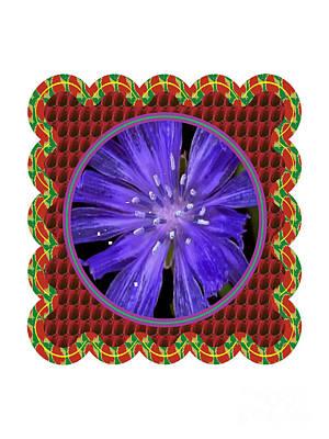 Iris Reticulata Purple Gem Flower Floral Photography N Graphic Fusion Art Navinjoshi Fineartamerica  Original