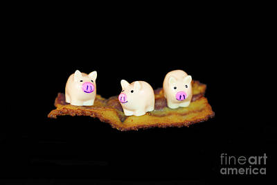 Ironic Pigs Art Print