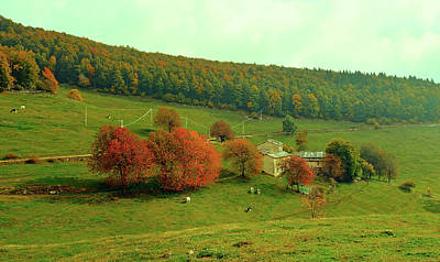 Photograph - Italian Rural Landscape In Autumn by Pixabay