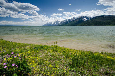 Photograph - Jackson Lake by Crystal Wightman
