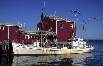 Jacob Pike Fishing Boat In Maine Art Print by Carl Purcell