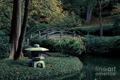 Art Print featuring the photograph Japanese Garden In Summer by Iris Greenwell