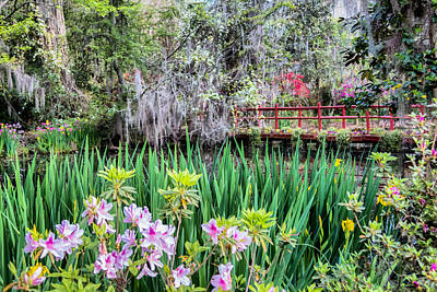 Photograph - Japanese Garden by Lynne Jenkins