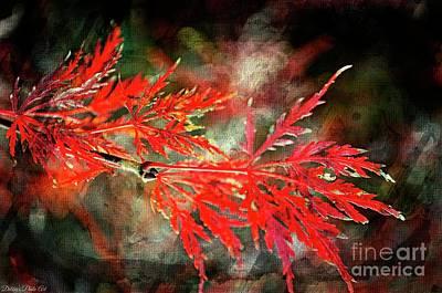 Photograph - Japanese Maple - Digital Paint by Debbie Portwood
