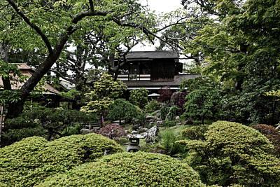 Tea Tree Flower Photograph - Japanese Tea Garden by L O C