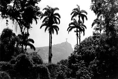 Jardim Botanico - Rio De Janeiro Art Print by Eduardo Costa