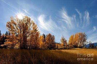 Photograph - Jasper - Autumn Sky Chief 2 by Terry Elniski