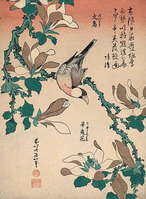 Genre Painting - Java Sparrow On Magnolia by Katsushika Hokusai
