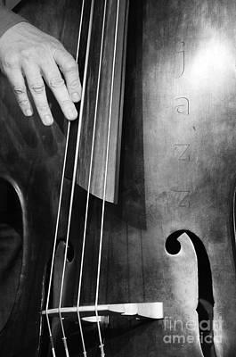 Double Bass Photograph - Jazz Bass Poster by Konstantin Sevostyanov