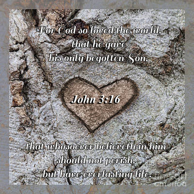 Photograph - John 3 Verse 16 by Diane Macdonald