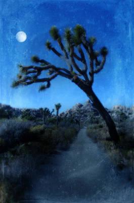 Joshua Trees At Night Art Print by Jill Battaglia