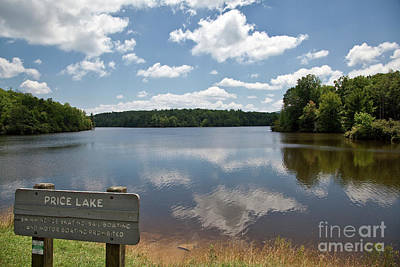 Photograph - Julian Price Lake by Jill Lang