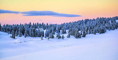 Photograph - Jura Mountain In Winter, Switzerland by Elenarts - Elena Duvernay photo