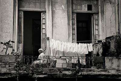 Photograph - Just Hanging Out by Mary Buck