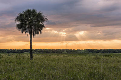 Photograph - Just My Luck by Jon Glaser