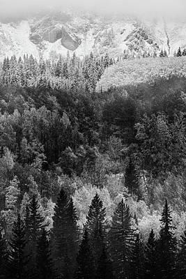 Photograph - Kebler In Monotone by John De Bord