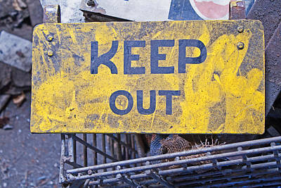 Photograph - Keep Out by Michael Porchik