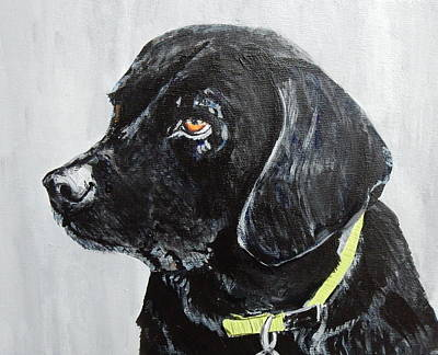 Painting - Keira by Betty-Anne McDonald