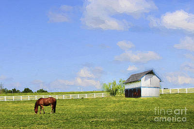Spring Scenes Photograph - Kentucky by Darren Fisher