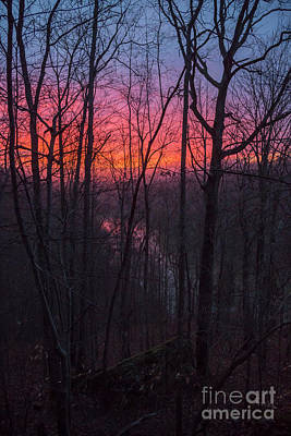 Photograph - Kentucky Sunrise by Jim West