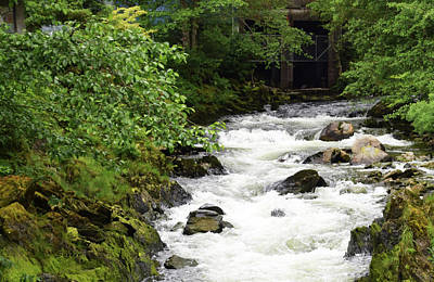 Photograph - Ketchikan Creek Of Creek Street Fame by Barbara Snyder