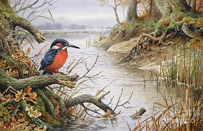 Fallen Leaf Painting - Kingfisher by Carl Donner