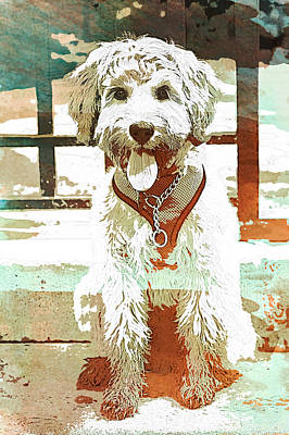 Watercolor Pet Portraits Photograph - Labradoodle-wc 2 by Joye Ardyn Durham