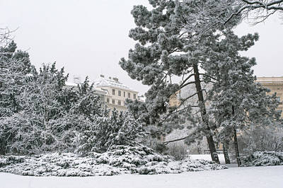Photograph - Lacy Winter In Brno by Jenny Rainbow