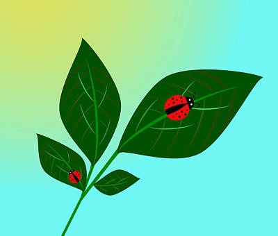 Priska Wettstein Land Shapes Series - Lady Bug by UMe images