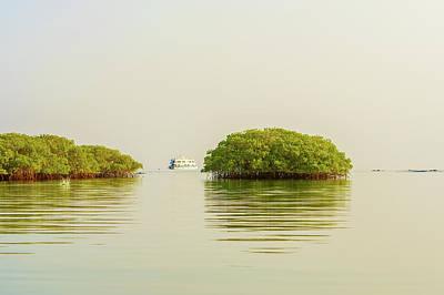 Photograph - Lagoon In Santa Cruz Island In Galapagos by Marek Poplawski