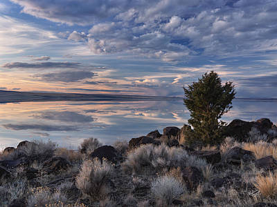 Photograph - Lake Abert 8 by Leland D Howard