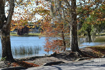Photograph - Lake Bonny by Carol  Bradley