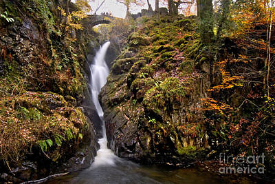 Aira Force Wall Art - Photograph - Lake District - Aira Force by Dave Lawrance