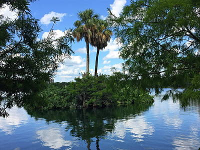 Photograph - Lake Eola Island by Denise Mazzocco