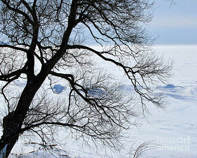 Photograph - Lake Erie Winter by John Freidenberg
