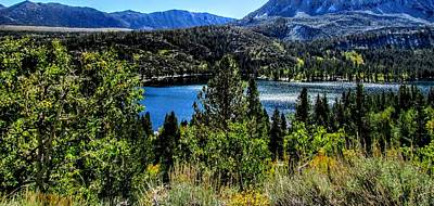 Photograph - Lake Looking by Marilyn Diaz
