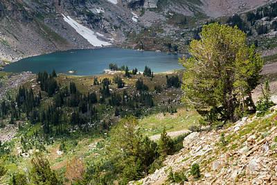 Whitebark Pines Photograph - Lake Solitude by Mike Cavaroc