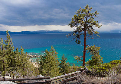 Photograph - Lake Tahoe by Irina Hays
