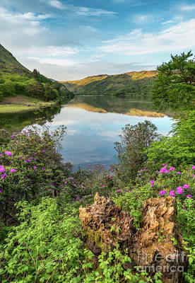 Spring Scenery Photograph - Lakeside by Adrian Evans